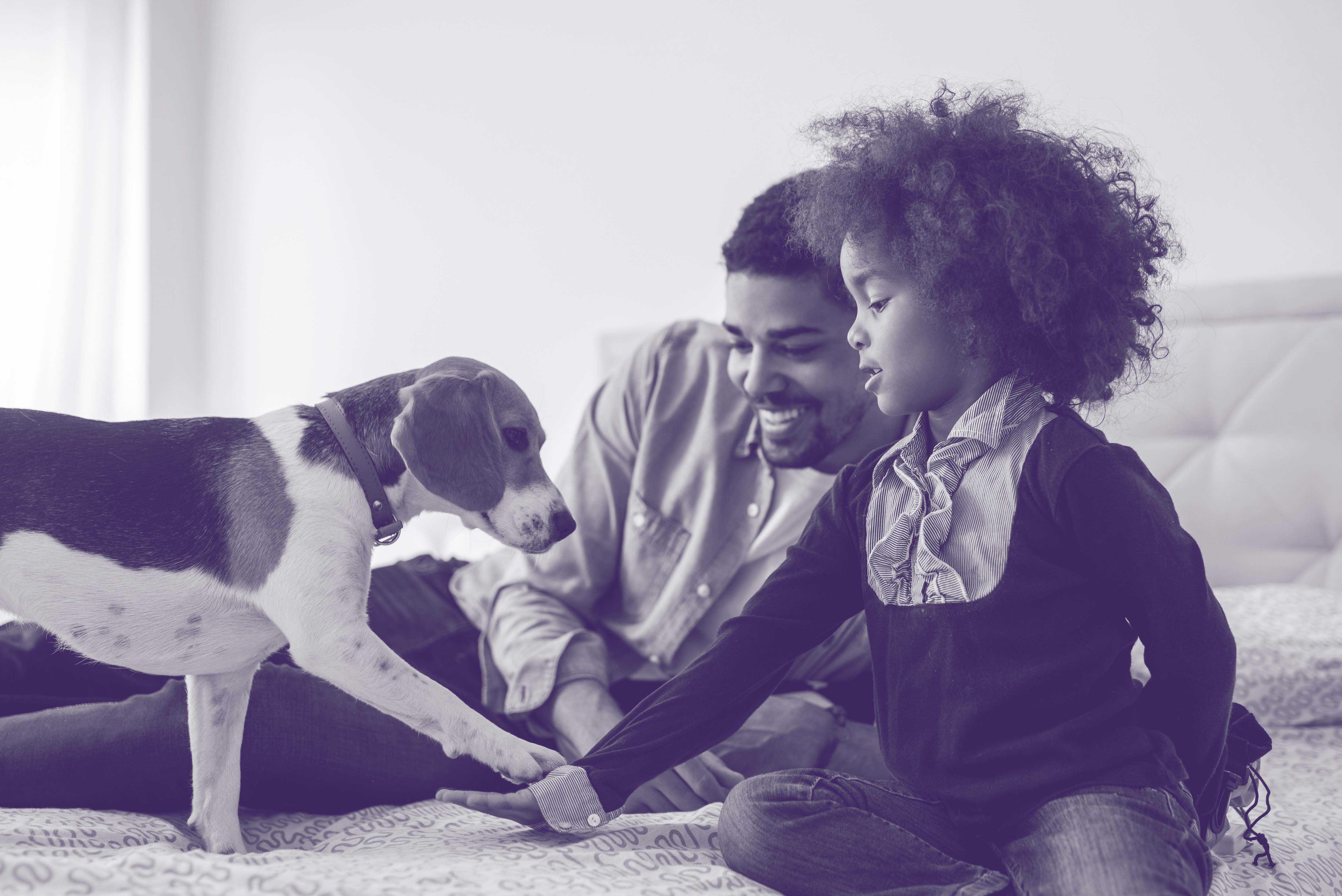 21st century family life